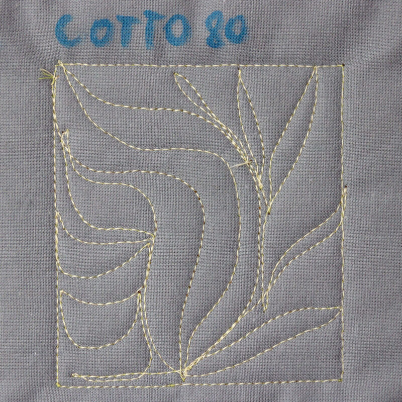 nici Cotto 80